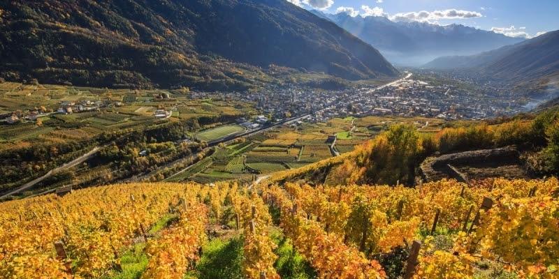 Viaggio virtuale in Valtellina