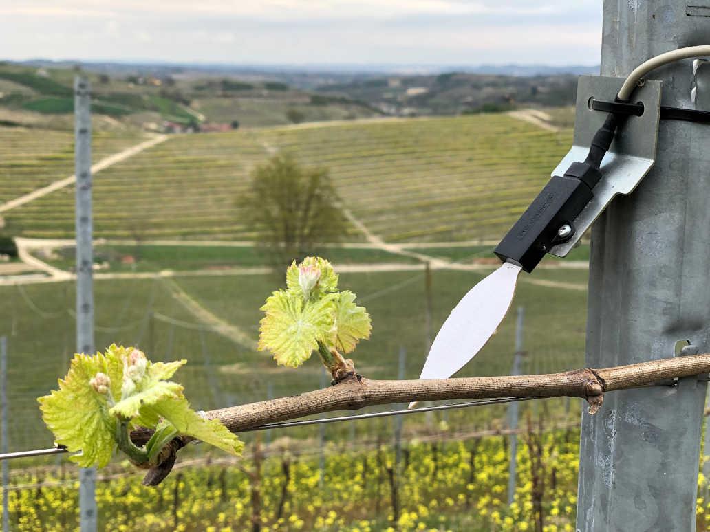 I migliori sistemi di monitoraggio per l'agricoltura di precisione