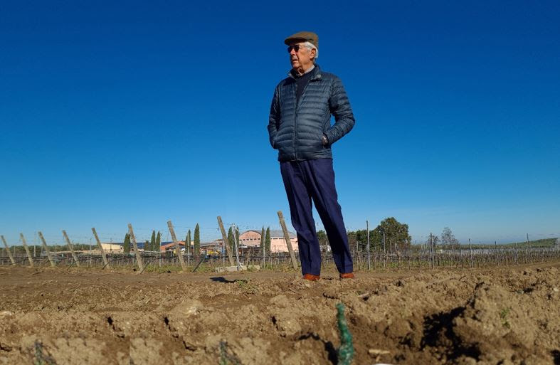 Puglia: rubate 35.000 barbatelle