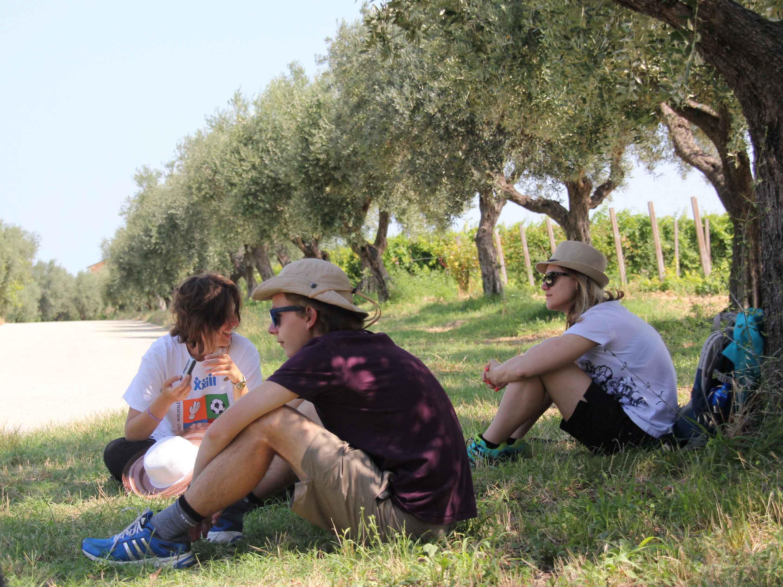 Nasce il Movimento Turismo dell'Olio Abruzzo