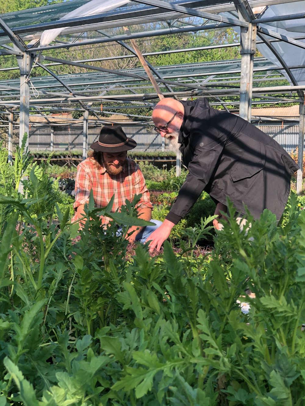 FOOD ARS: nutrire le comunita' facendo del bene alla terra