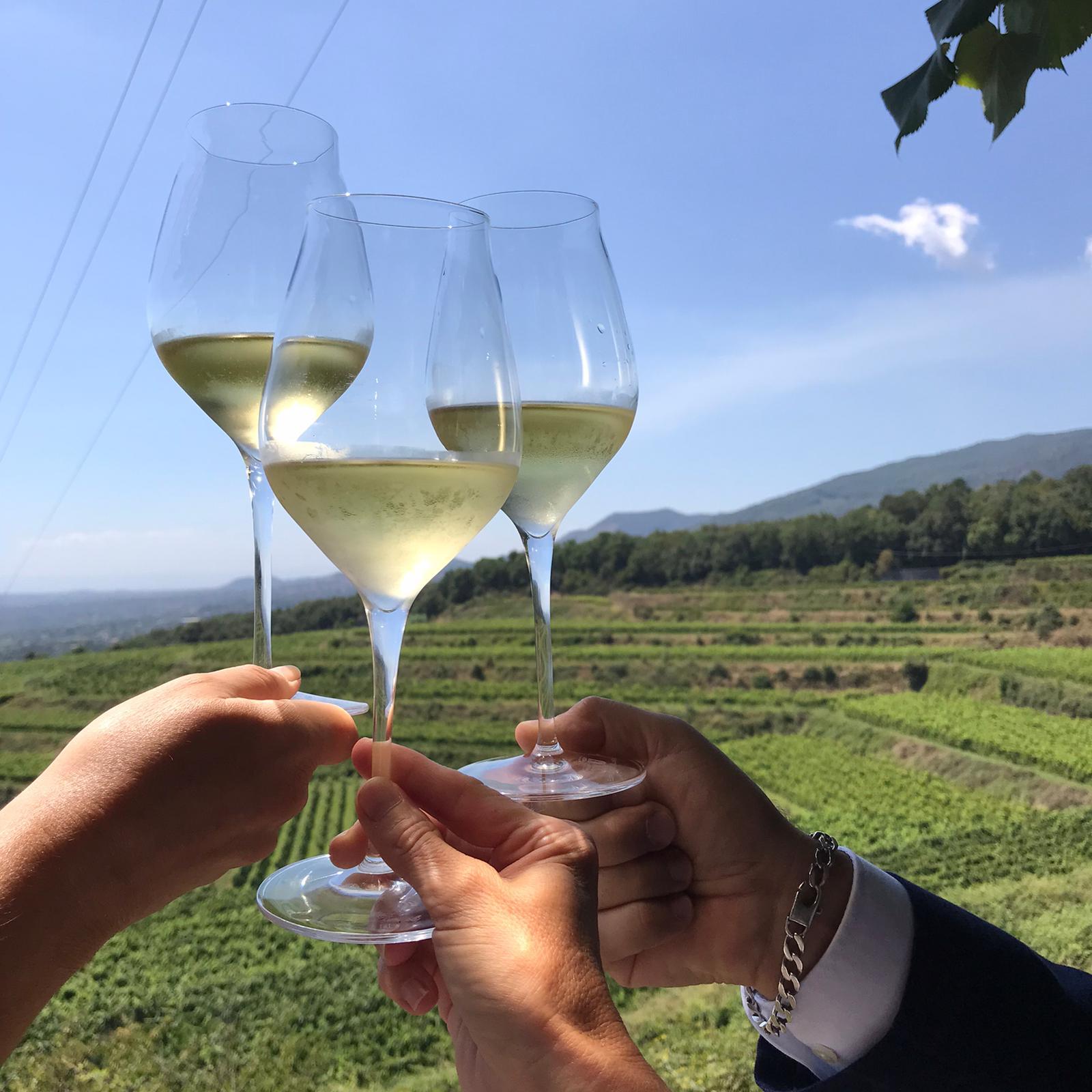 In arrivo la 41a edizione di ViniMilo e i vini vulcanici