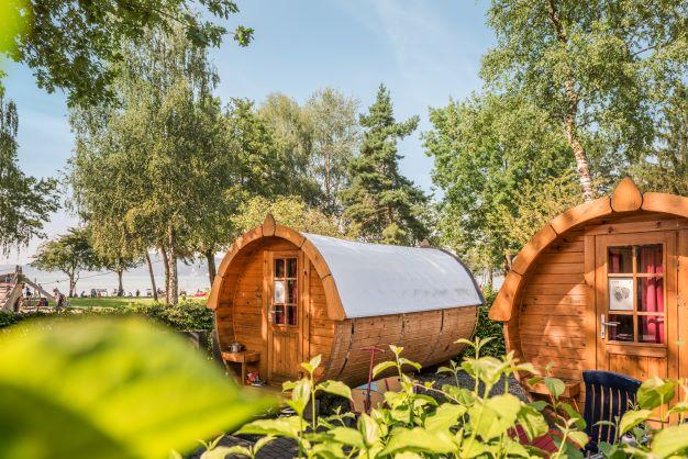 Autunno sul Lago di Costanza: vendemmia, musei del gusto e festival gastronomici