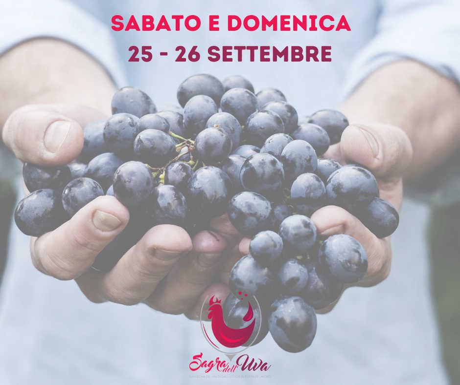 45a Sagra dell'Uva - Rassegna di vini di Galluccio e di Terra di Lavoro