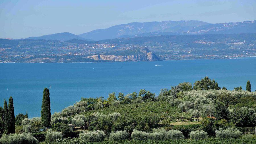Enoregioni italiane: Garda Veneto