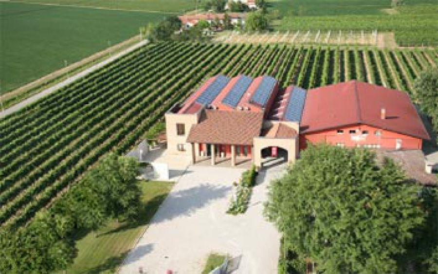 Oltre il Biologico: i vini Resiliens dell'Azienda Le Carline di Pramaggiore