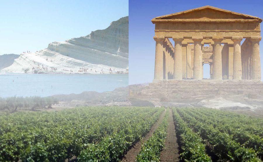 Lavorazioni a mano e coltivazioni senza prodotti nocivi