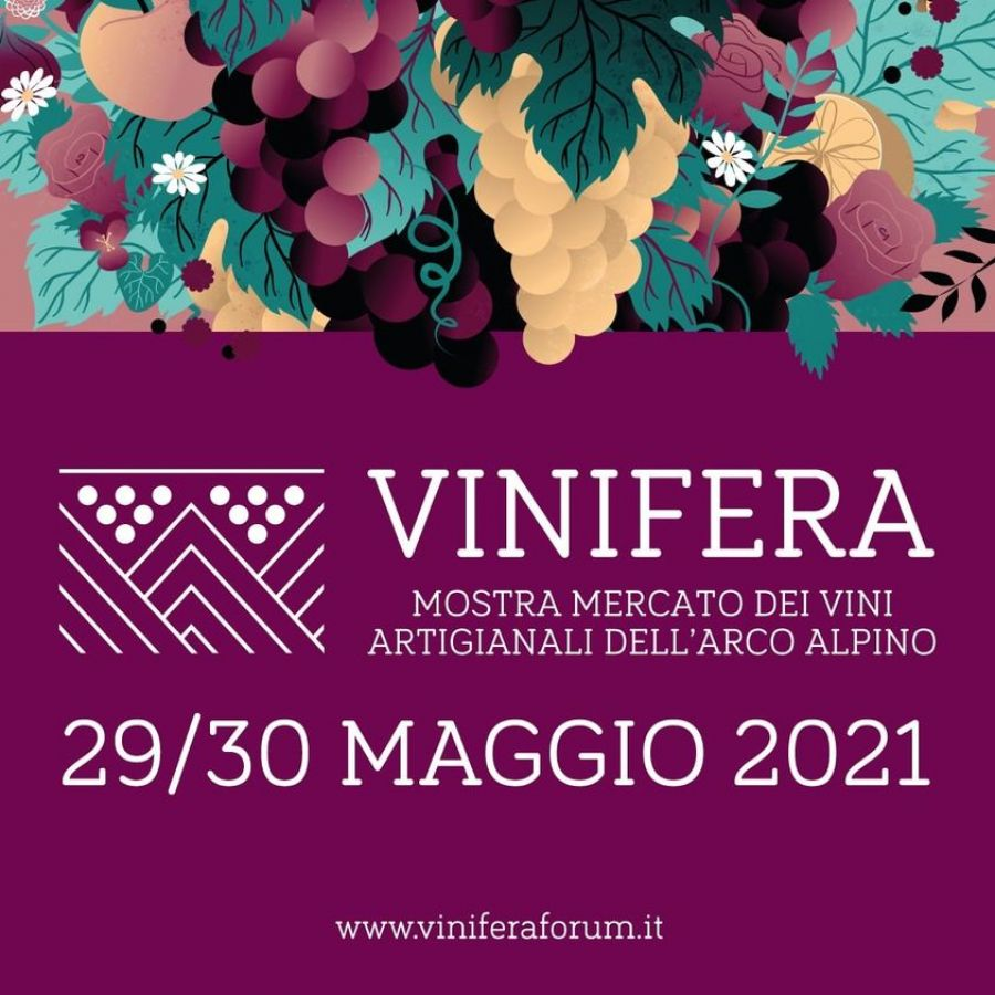 Vinifera 2021 open air