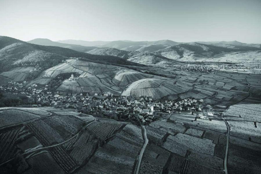 Millésimes Alsace DigiTasting