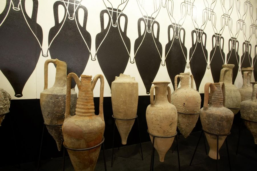 Riaprono Museo del Vino e Museo dell'Olio