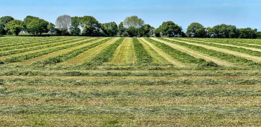 Per un uso sostenibile del suolo