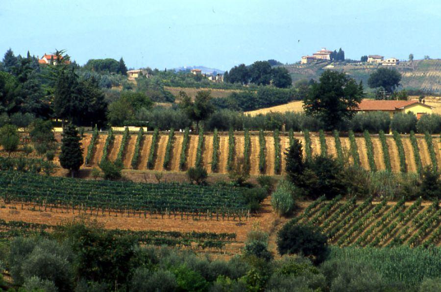 Colli della  Toscana Centrale