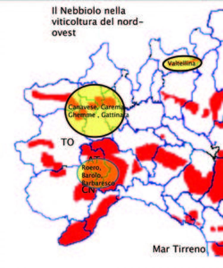 Profilo sensoriale comparato di vini Nebbiolo provenienti da differenti zone viticole
