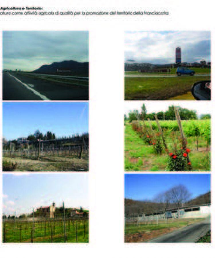 La viticoltura come attività agricola di qualità per la promozione del territorio della Franciacorta