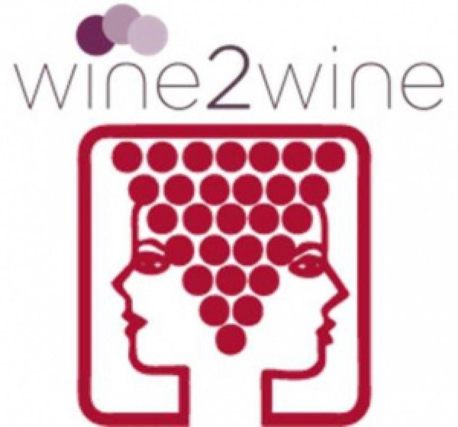 I molteplici valori del vino: economici, sociali, ambientali