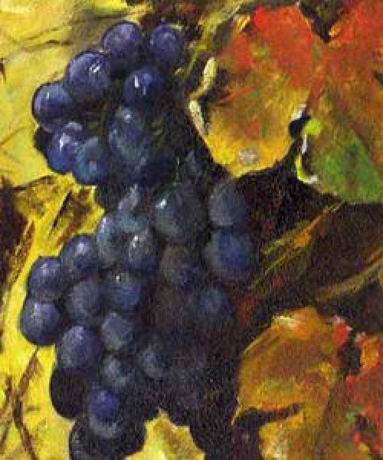 Il vino novello: una realtà nel patrimonio vinicolo Italiano